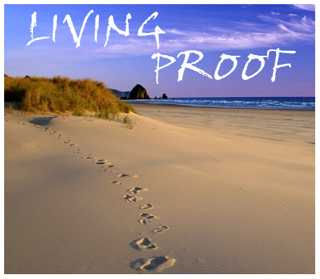 2012-2013 Theme: Living Proof